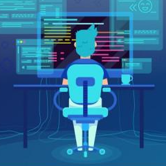 IT & Software Development - Tiger Global